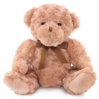 Teddy bear- Large