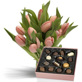 Pink tulips with Chocolate