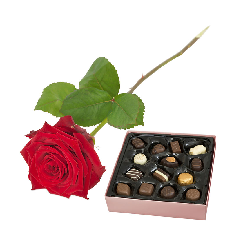 Red rose with chocolates