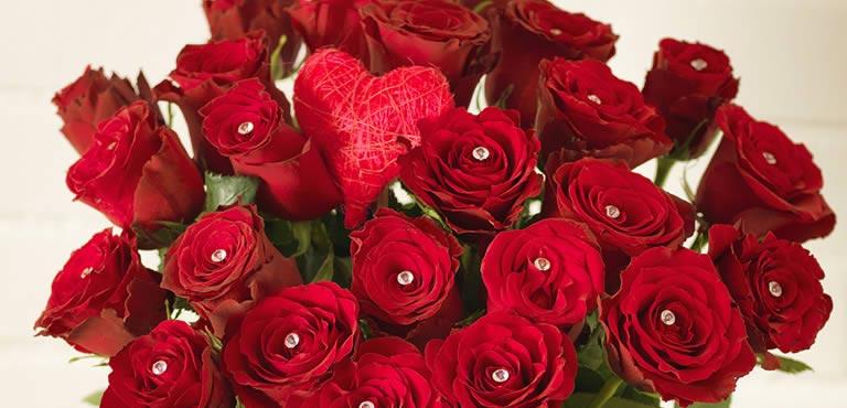 Amour & romance