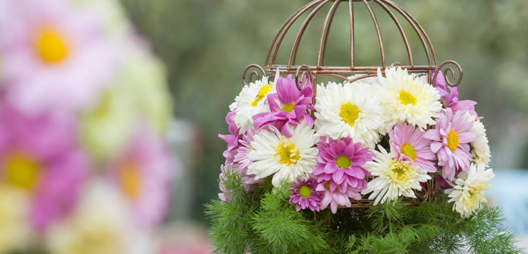 Care tips for floral arrangements
