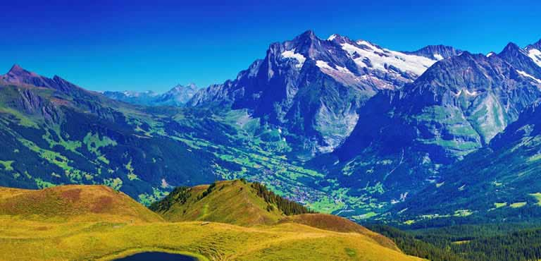 Bloemen sturen naar Zwitserland
