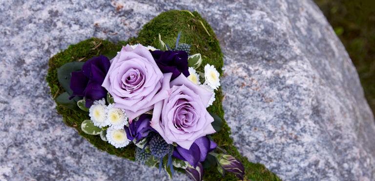 All Saint flowers